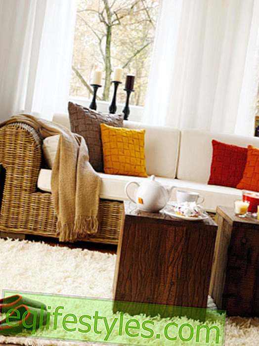 Interior design ideas for the living room in autumn colors
