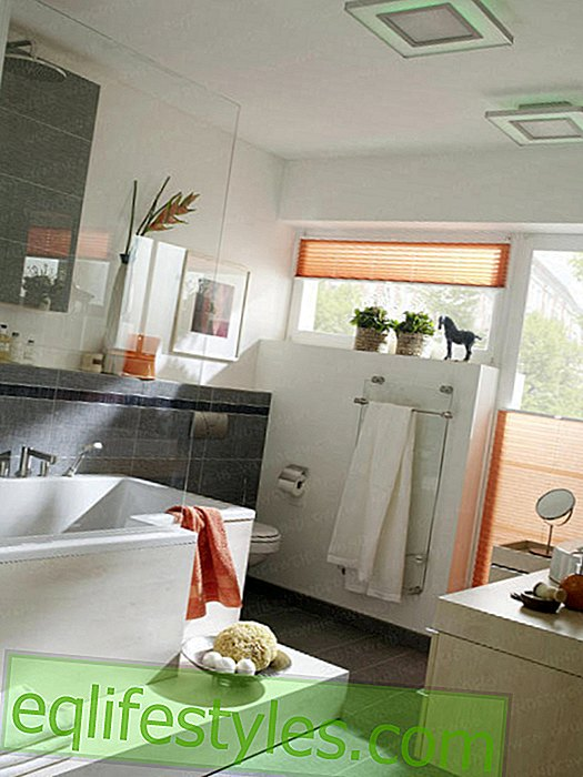 Small bathroom with clever room layout