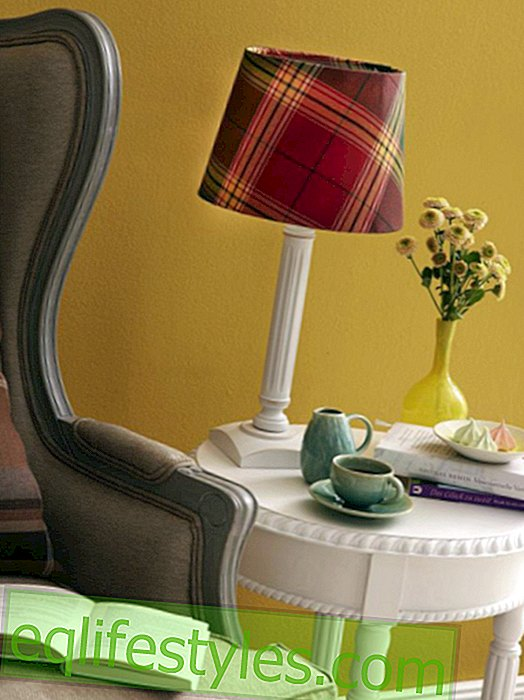 DIY guide for a lampshade