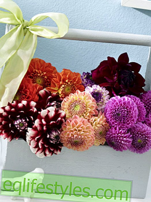 Simply regal: floral decoration with dahlias