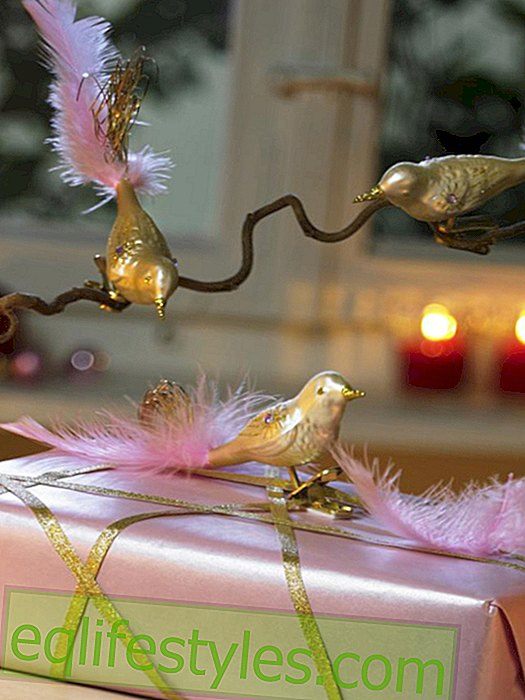 live - Gift wrap with bird pendant