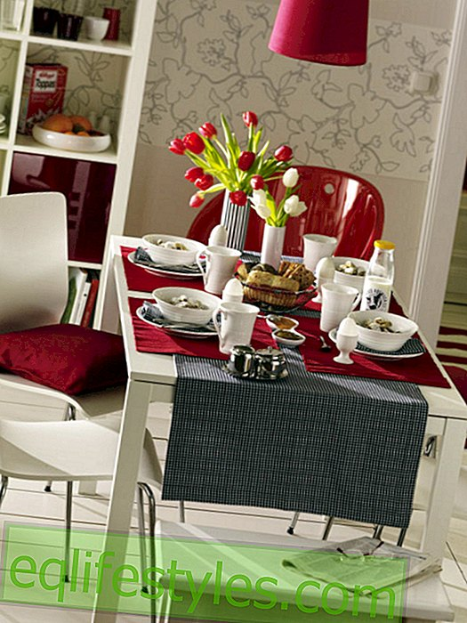 Modern covered breakfast table in black and white with red