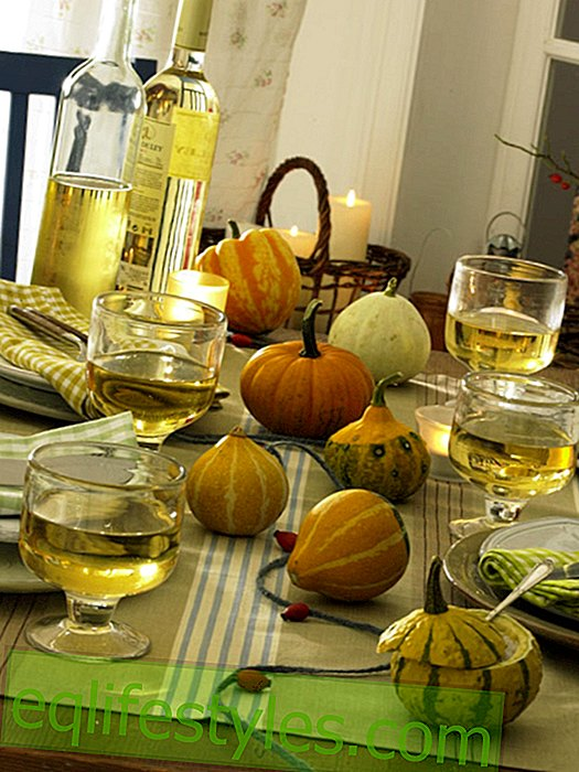 Table decoration with pumpkins