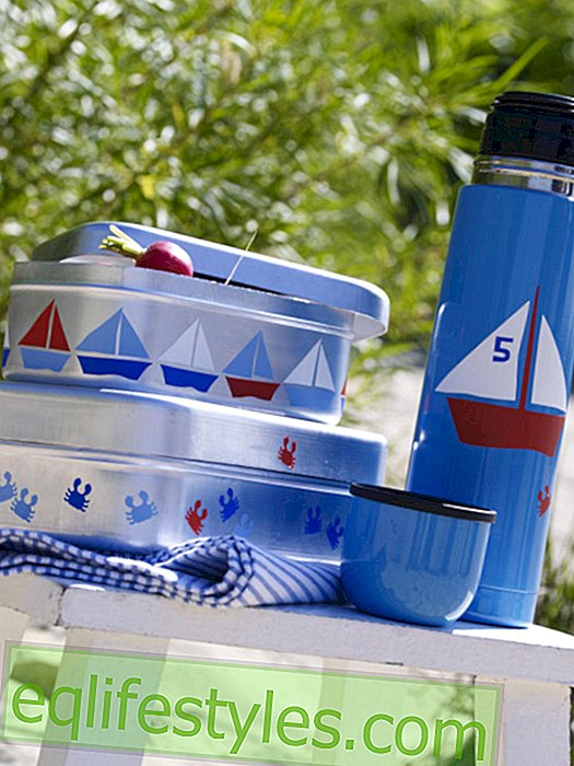 Thermos and lunch boxes with maritime motifs