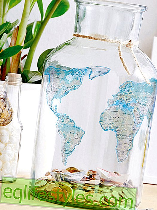 DIY idea: money box for Globetrotter