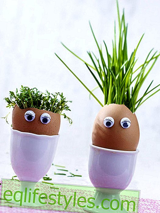 Egglings: 5 Easter DIY ideas with egg shells