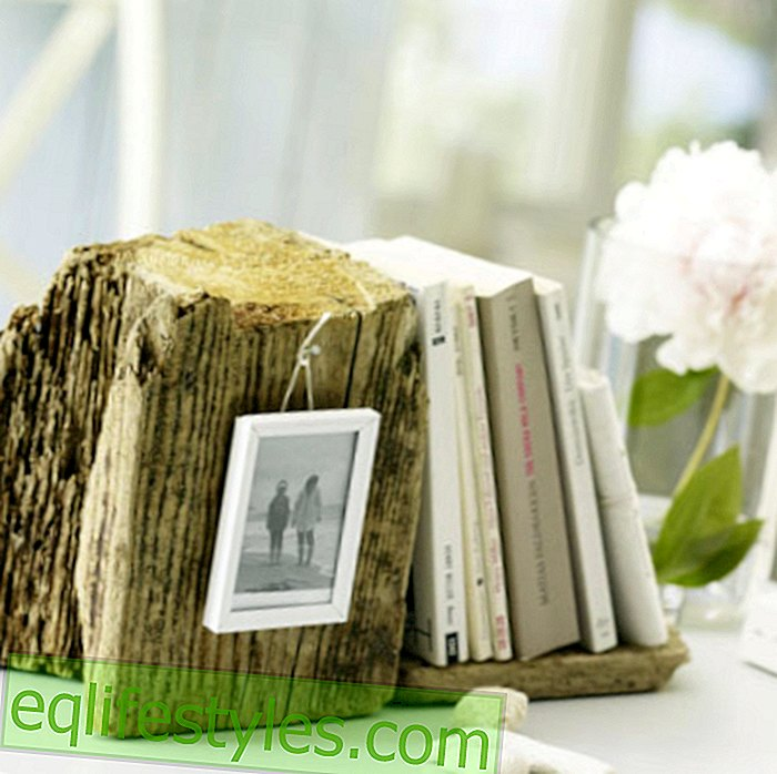 Collected decoration with driftwood is in!