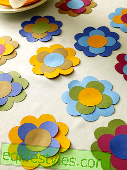Table of the Month: 70s - Prilblumen